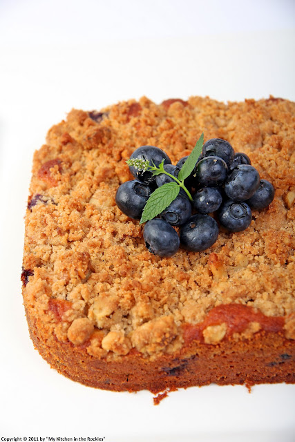 012+a2 Blueberry Walnut Streusel Cake