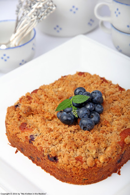 045+a3 Blueberry Walnut Streusel Cake